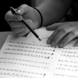 Undervisnig i hørelære, Musikakademiet TRAX
